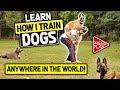 MasterPaw Course | Dog Training System | Dog Training Tips | Dog Training Course | Train Dogs