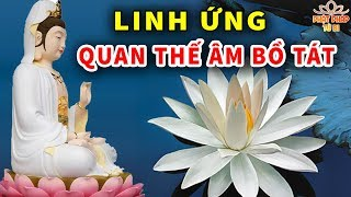 Linh Ứng Quan Thế Âm Bồ Tát Từ Bi Cứu Khổ Cứu Nạn Chúng Sinh Là Có Thật - Lời Phật Dạy Hay Nhất