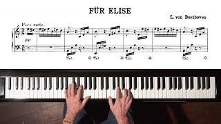 """Beethoven """"Für Elise"""" Paul Barton, FEURICH 218 piano"""