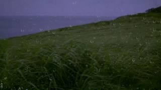 Beyaz Gürültü Rahatlatıcı Uyku ve Dinlenme w/ Uzak Gök & Okyanus Dalgaları | için yağmur ve Rüzgar Geliyor