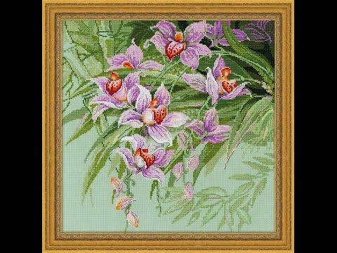 Вышивка крестиком. Обзор Тропические орхидеи