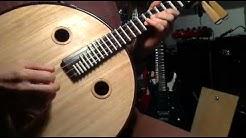 Chinese Zhongruan Mondgitarre Moon Guitar Ruan