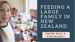 MASSIVE! 2 WEEKS WORTH of Groceries for Under $300 || LARGE FAMILY IN NZ