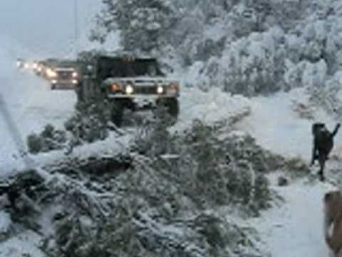 HUMMER H1 on highway 38 pulling the tree