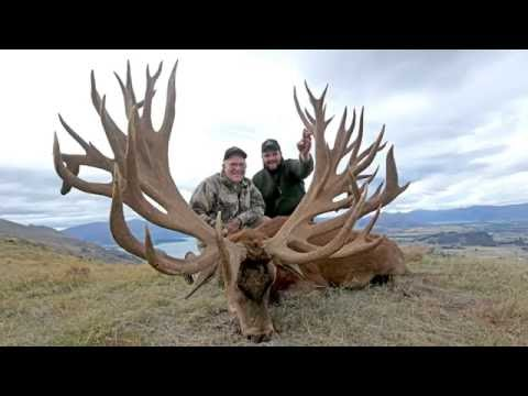 Cardrona Safaris New World Record Red Stag