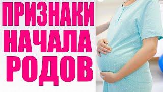 ПРИЗНАКИ НАЧАЛА РОДОВ | Главные отличия первых и повторных родов