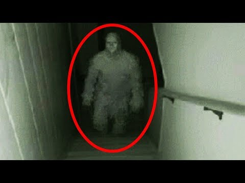 Top 15 Scariest Things Found in Basements