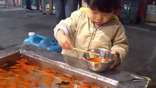 金魚すくい thumbnail