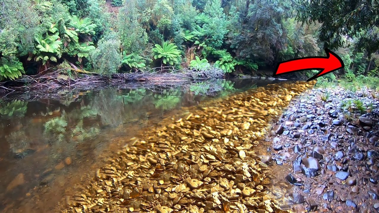 Download How much gold can be found prospecting downstream??