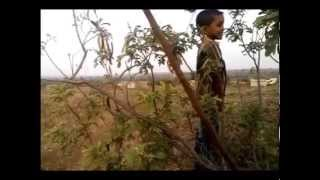 Malran(a moorland)..an unseen beauty A Short Film by Prasad J.Shelke