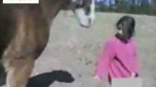 Download Video Horse Vs Girl MP3 3GP MP4