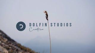 Dolfin Studios || Editing Reel 2019
