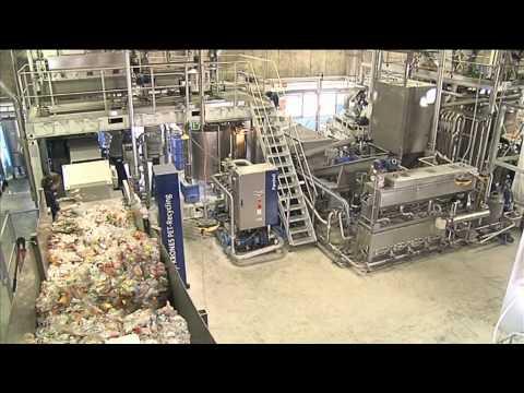 Instatipp recycling einer pet flasche doovi for Fruchtfliegen im blumentopf