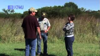 clarks creek wraps ktwu s sunflower journeys