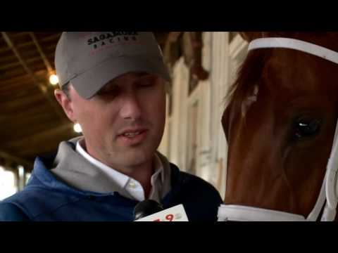 Horses are training for 142nd Preakness