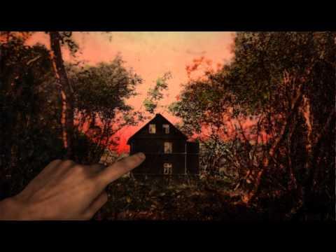 Клип Soley - Smashed Birds