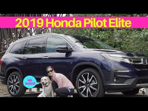 Honda Pilot Elite: Andie the Lab Review! #Honda #AndietheLab #Dogs