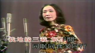 願為蝴蝶繞弧墳 李寶瑩獨唱 纯音樂  至醒提供