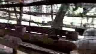 Angora Rabbit Farm, Kullu, HP, India