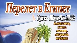 Отдых в Египте 2019. Летим в Египет. Одесса - Шарм-Эль-Шейх.