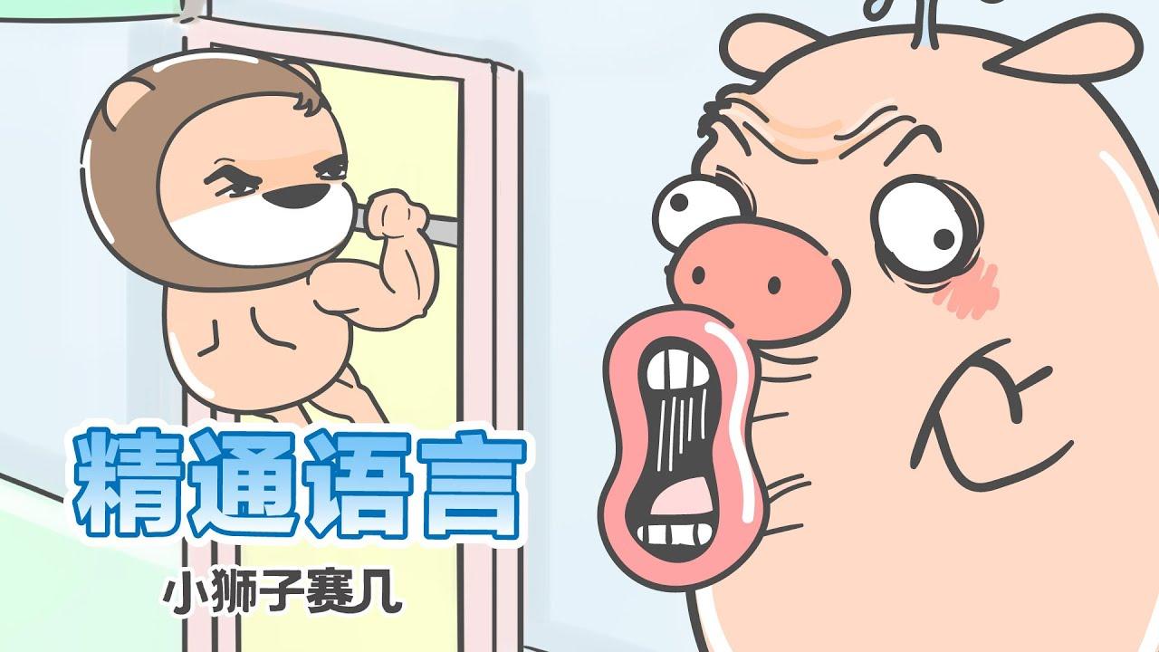 【小狮子赛几】今天的豬王子,不太聰明的樣子