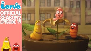 official hello pink - larva season 2 episode 19
