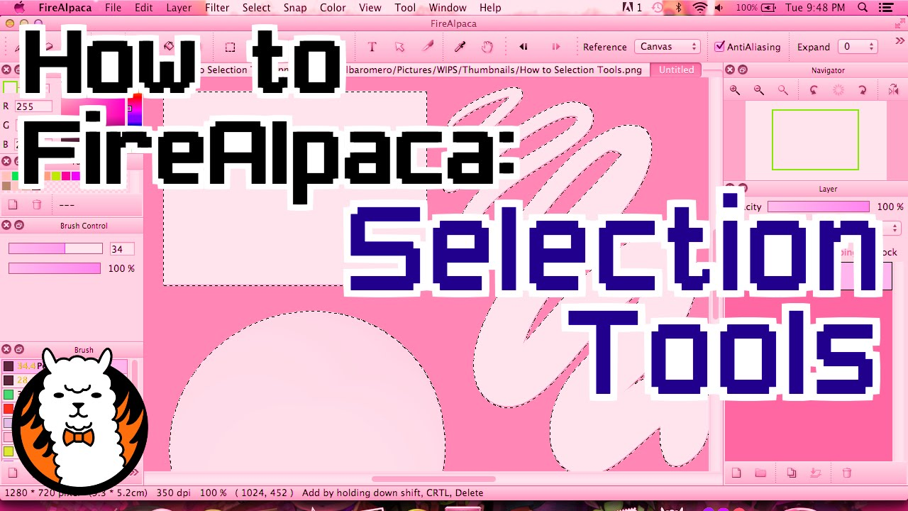 Selection Tools on FireAlpaca