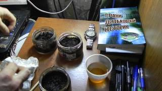 эксперимент выращивания японской сосны бонсай bonsay дома способ первый часть 1(привет всем начинаю новый свой домашний эксперимент, на этот раз попробую прорастить и в дальнейшем выращи..., 2014-01-15T17:26:37.000Z)