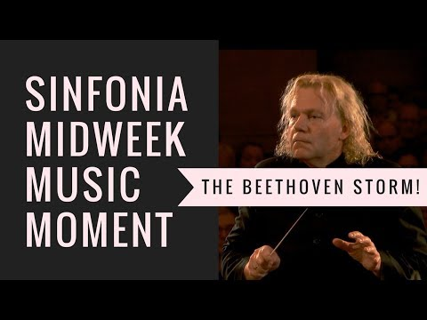 The Beethoven Storm - Symphony no.6 Pastoral