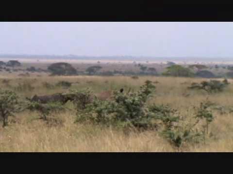 Explore Nairobi Tented Camp