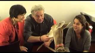 Alain Delon et Soly Ange de l'Arche de Noé