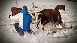 Candide Thovex charged by a COW