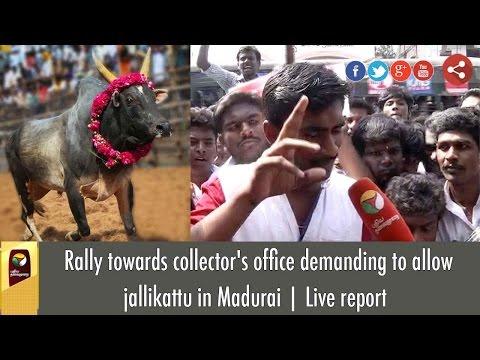 Rally towards collector's office demanding to allow jallikattu in Madurai | Live report