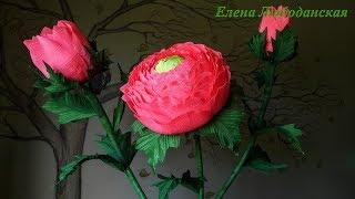 Большие цветы из гофрированной  бумаги  ранункулюсы
