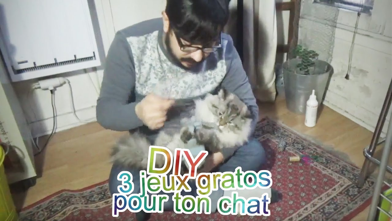 diy 3 jeux gratuits et rapide faire pour ton chat cr pe au citron youtube. Black Bedroom Furniture Sets. Home Design Ideas