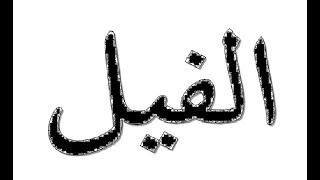 Surah Al Fiil | Imam Haramain Maher Al Muaiqly