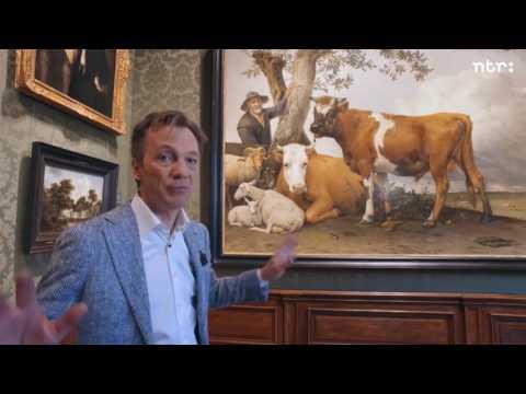 Panorama Pijbes - De stier van het Mauritshuis