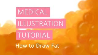 Medical Illustration Tutorial: How to Draw Fat in Adobe Photoshop