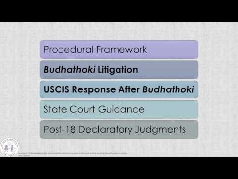 Post 18 Issues In Texas State Courts And Before USCIS YouTube
