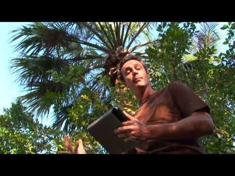 Audubon Guides Trees.wmv