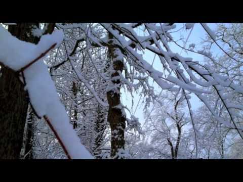 Winter Walk- original song