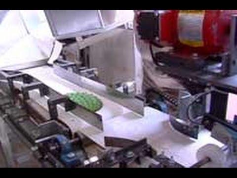 Máquina desespinadora de nopal, producto 100% Tlaxcalteca