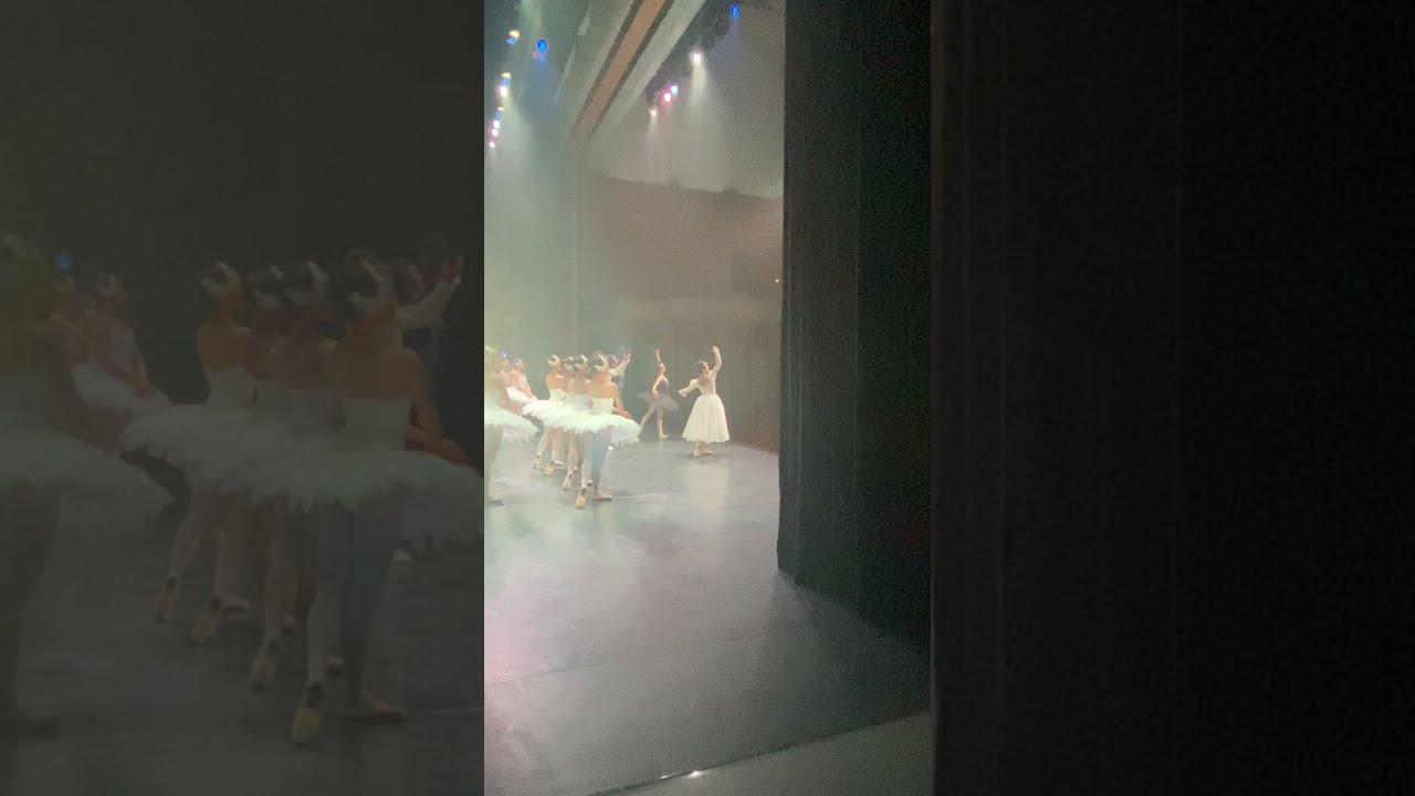 【白鳥の湖】~7/18公演~カーテンコールより #shorts