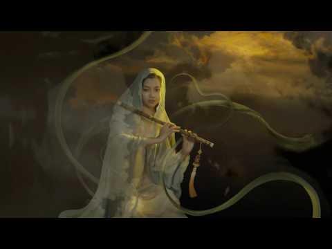 Flute Concerto in D Major, Op 10 Nº 3 RV 428 - Barbara Kortmann - HDfull