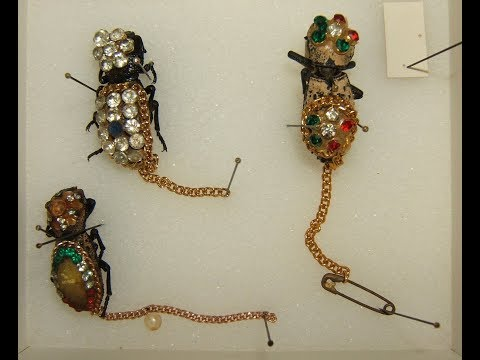 Jewelry Comes Alive : Bug Jewelry
