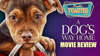 A DOG'S WAY HOME MOVIE REVIEW - Double Toasted Reviews
