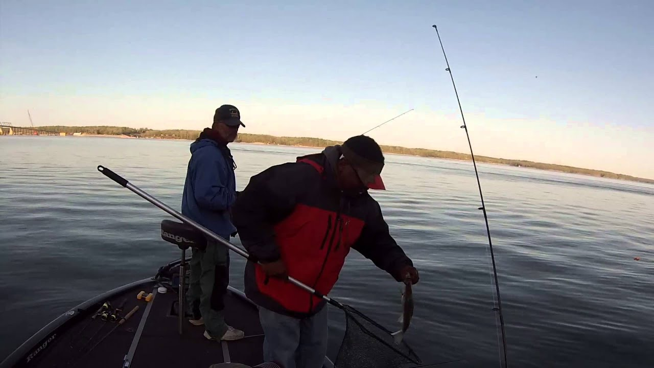 Kentucky lake crappie fishing 2015 youtube for Kentucky lake crappie fishing report