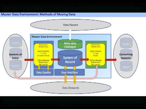 A Model Driven Data Governance Framework for MDM - A Case Study from StatOil