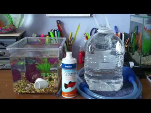 How to do a water change on a small betta tank youtube for How to keep fish tank clean without changing water
