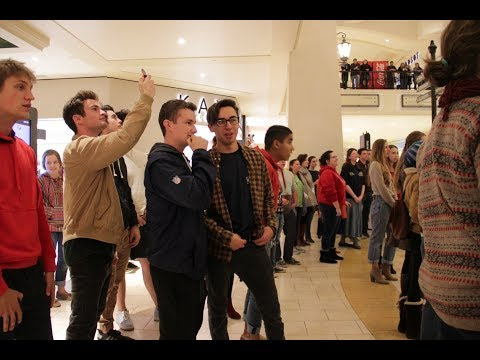 Thomas Aquinas College Christmas Flash Mob 2017